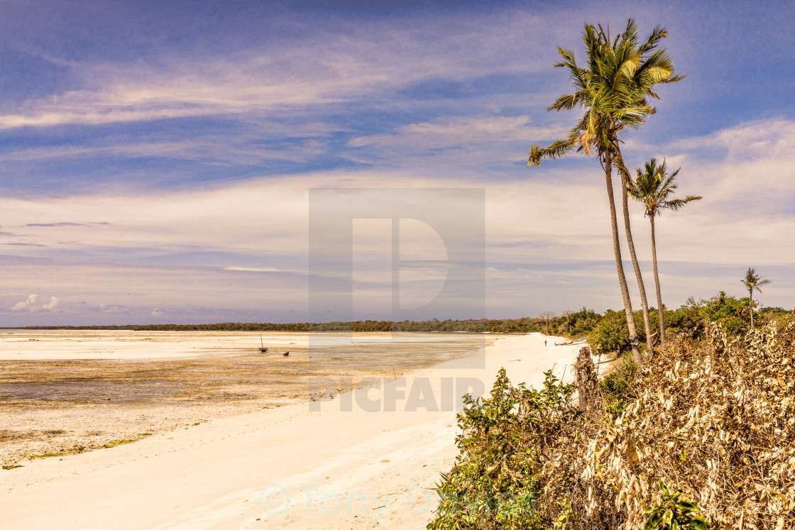 """Mozambique Coastline"" stock image"