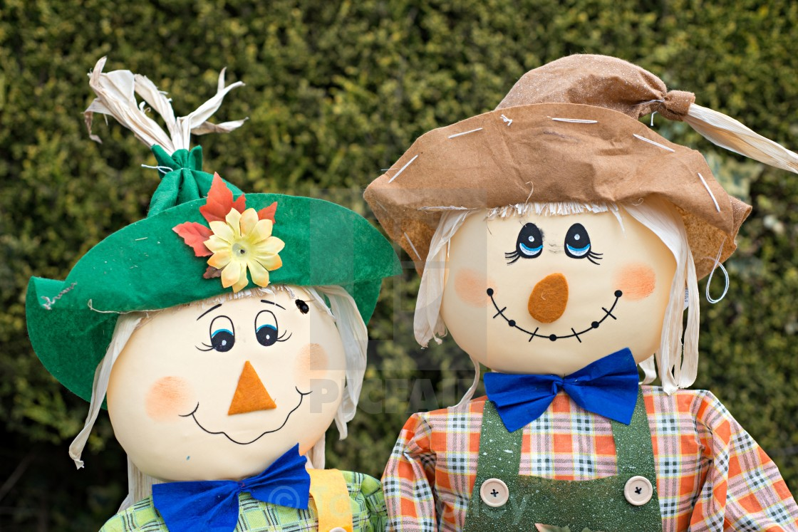 """""""Scarecrows"""" stock image"""