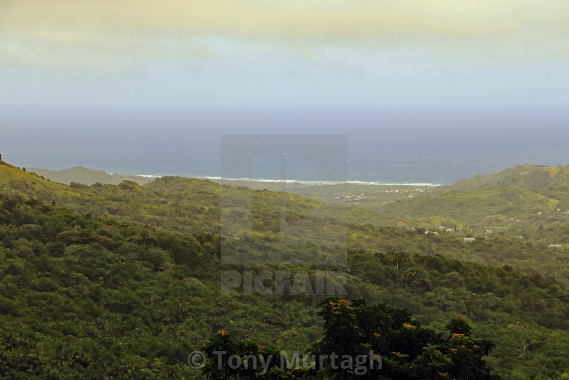 """""""Highland View"""" stock image"""