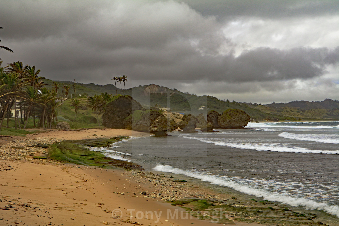 """Bathsheba Beach"" stock image"