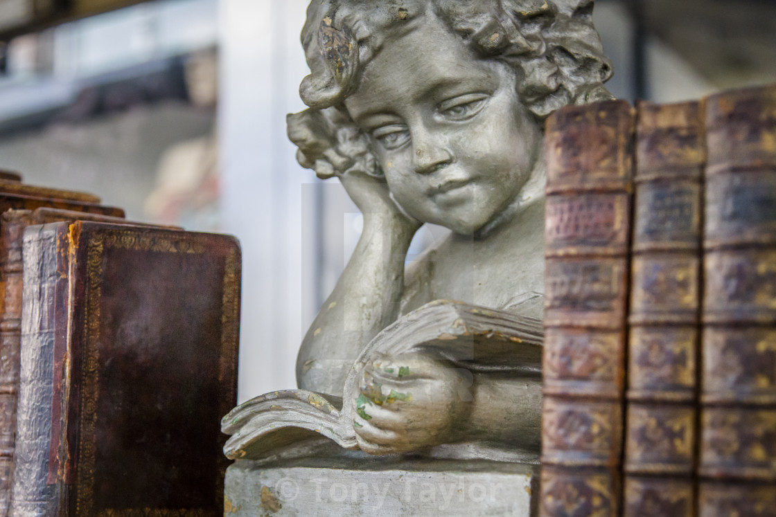 """Angel reading books"" stock image"