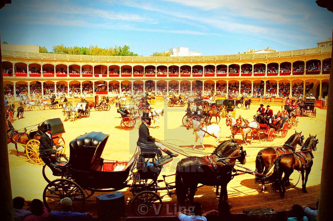 """Plaza de Toros Horseshow"" stock image"