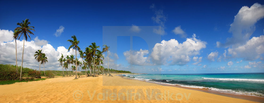 """Tropical exotic beach, Punta cana"" stock image"