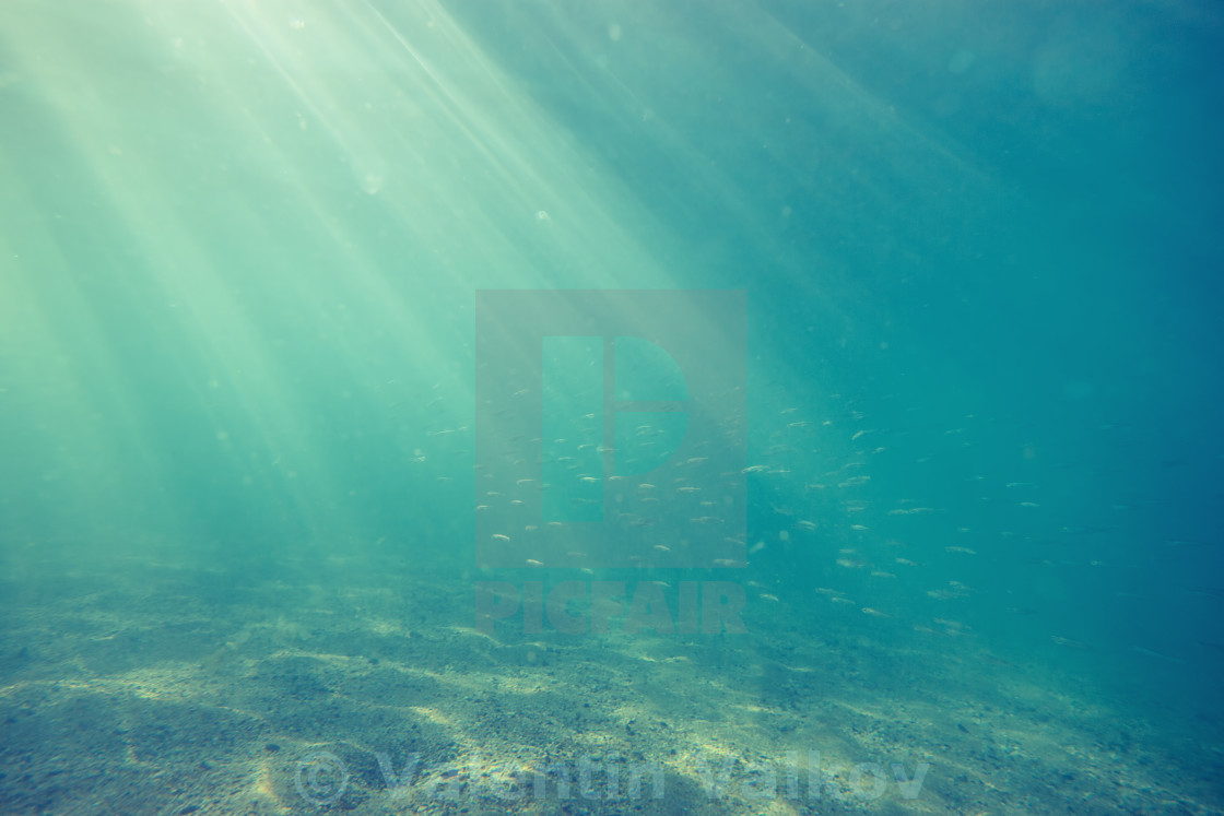 """Underwater shot with sunrays and fish in deep tropical sea"" stock image"