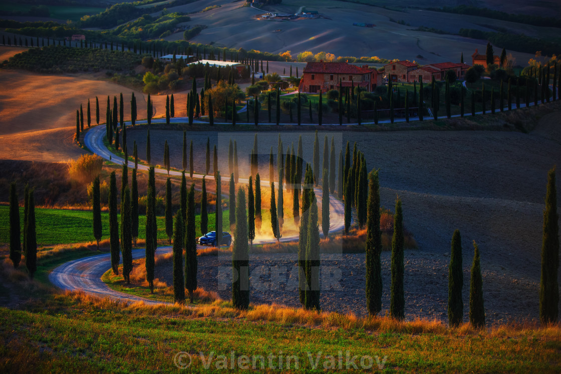 """Tuscany, rural sunset landscape. Countryside farm, cypresses tre"" stock image"