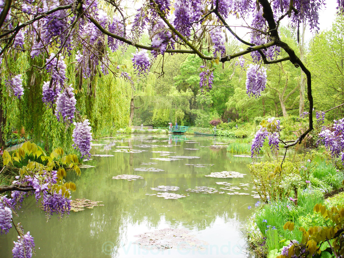 """Monet's garden- France"" stock image"