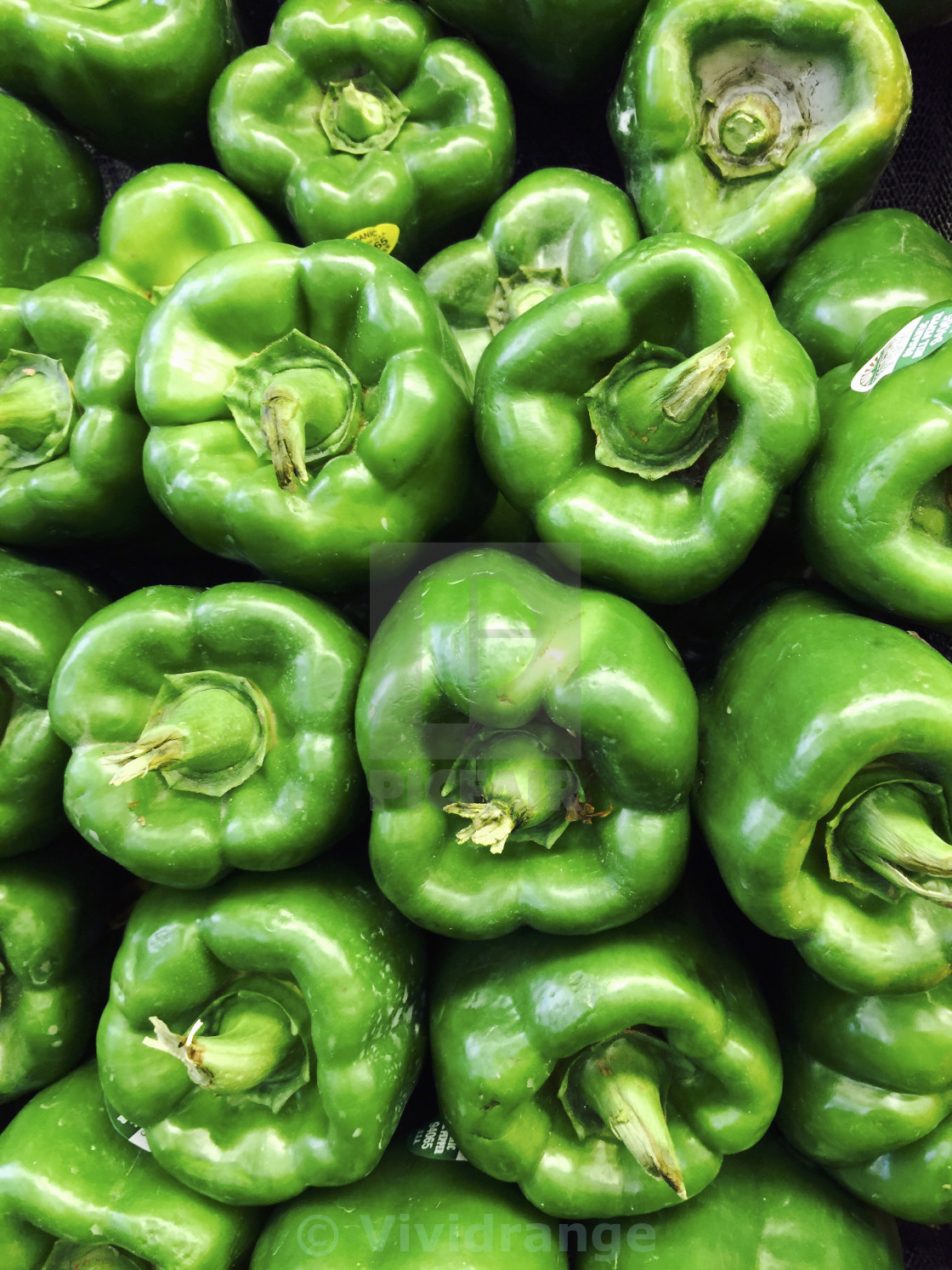 """""""Green Peppers, food"""" stock image"""
