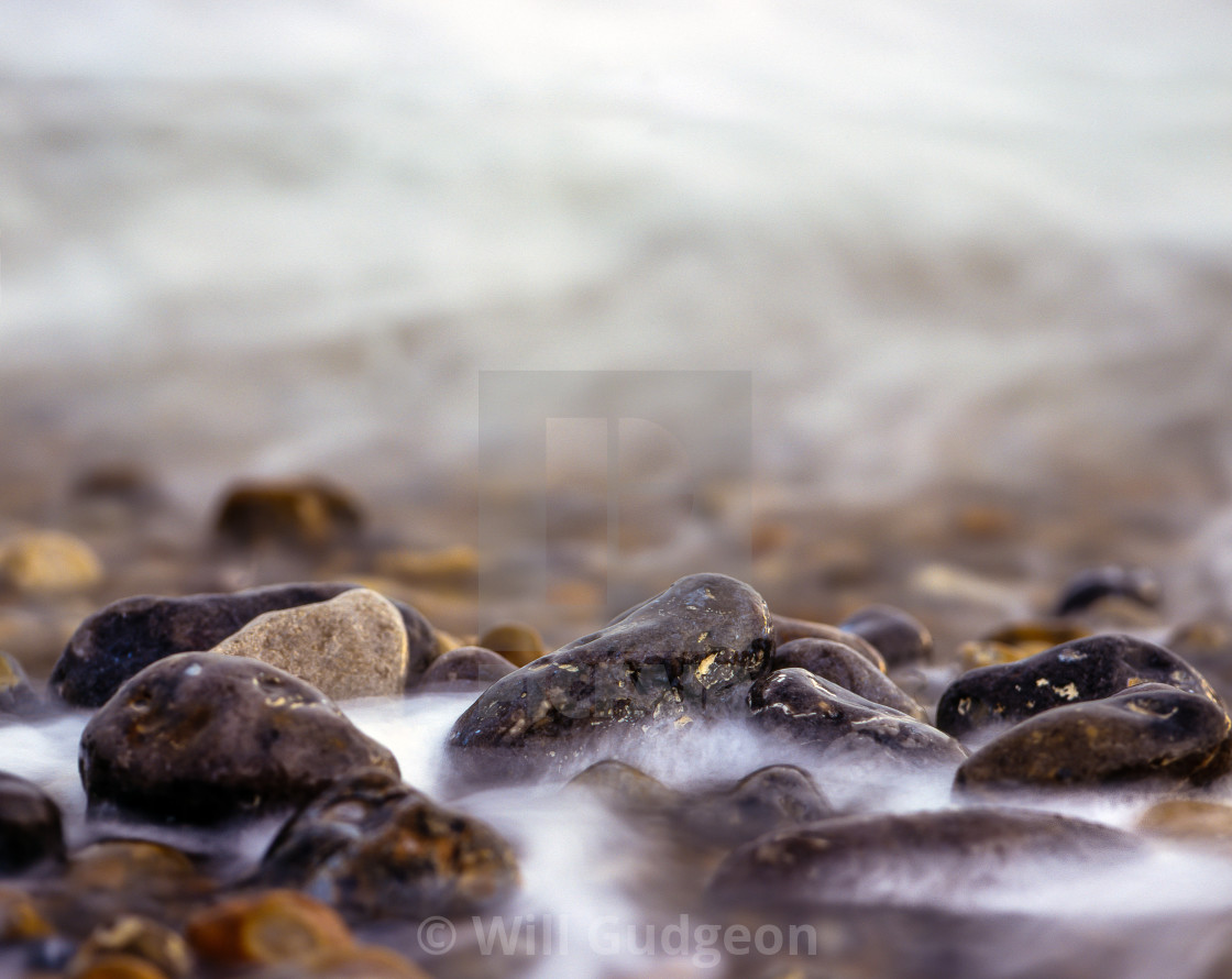 """Seashore"" stock image"
