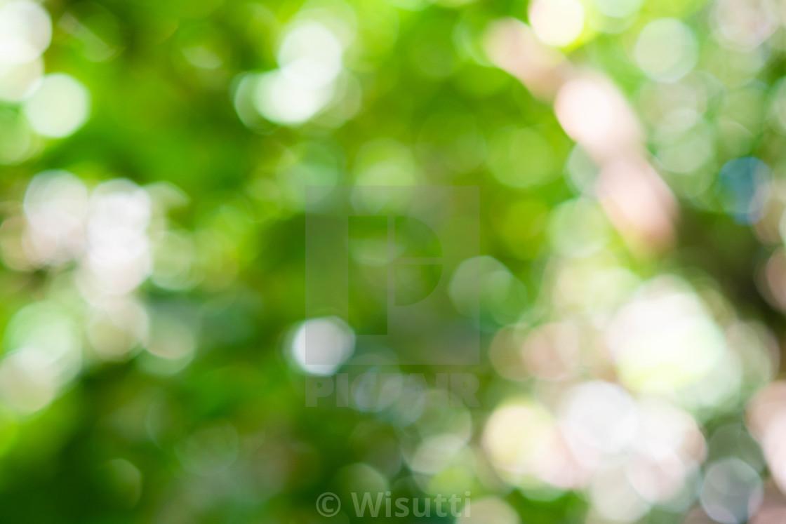 Green bokeh on nature defocus abstract ...