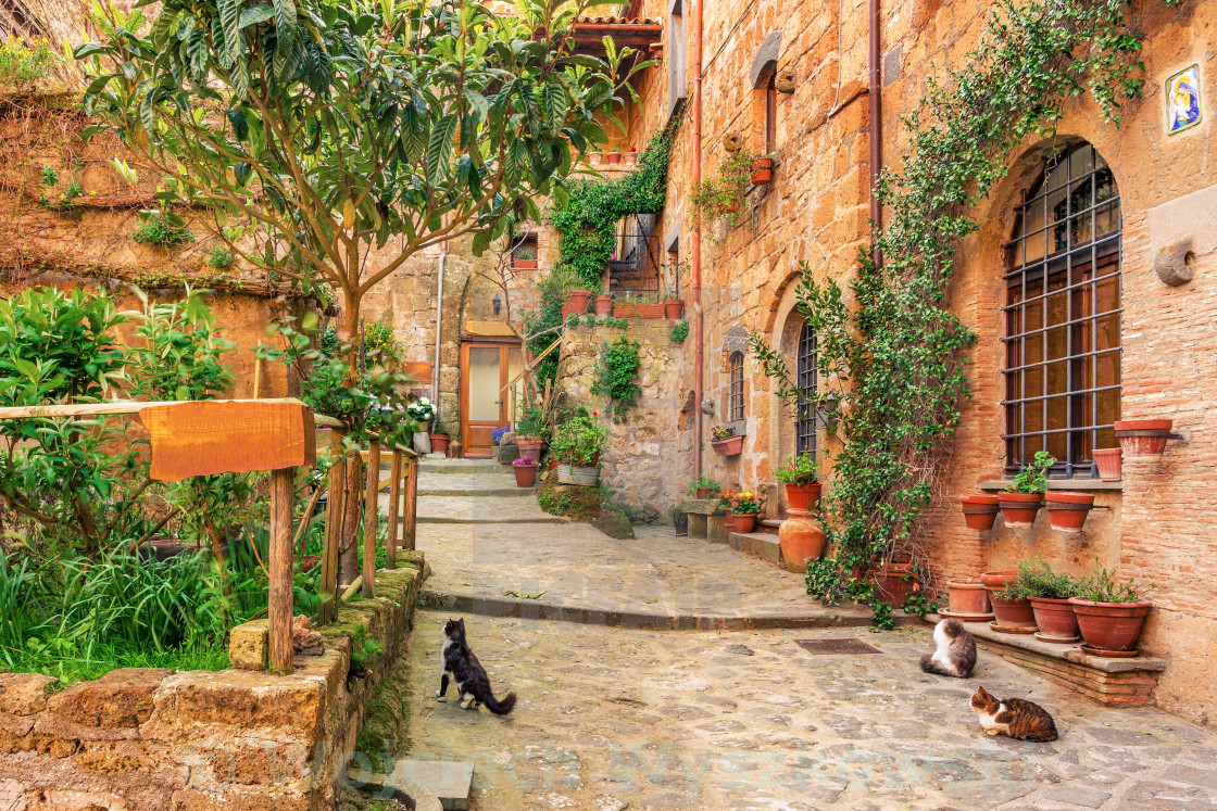 """Beautiful alley in old town Tuscany"" stock image"