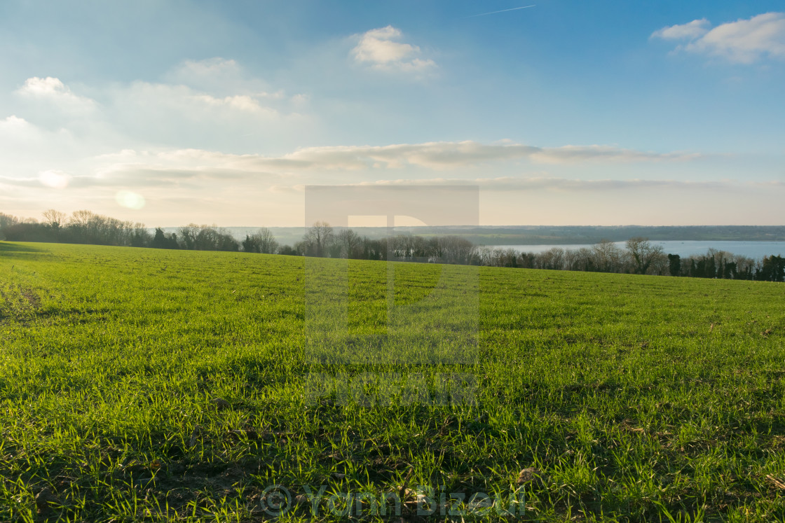 """Green and Blue Landscape"" stock image"