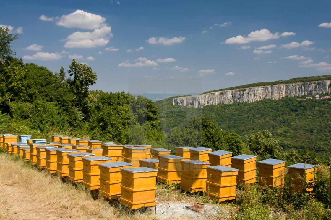 """Beehives and beekeeping"" stock image"