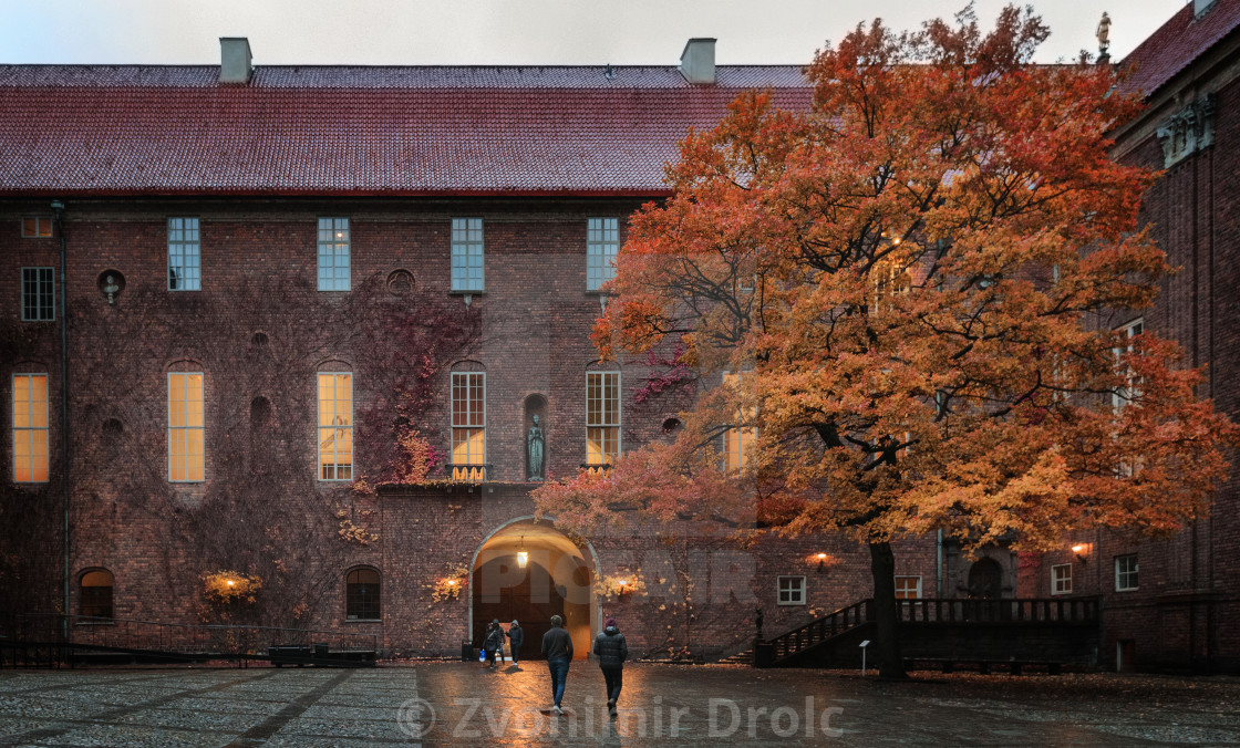 """""""Large tree in old city in autumn"""" stock image"""