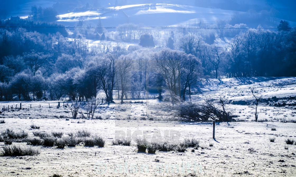 """""""Frosty morning"""" stock image"""