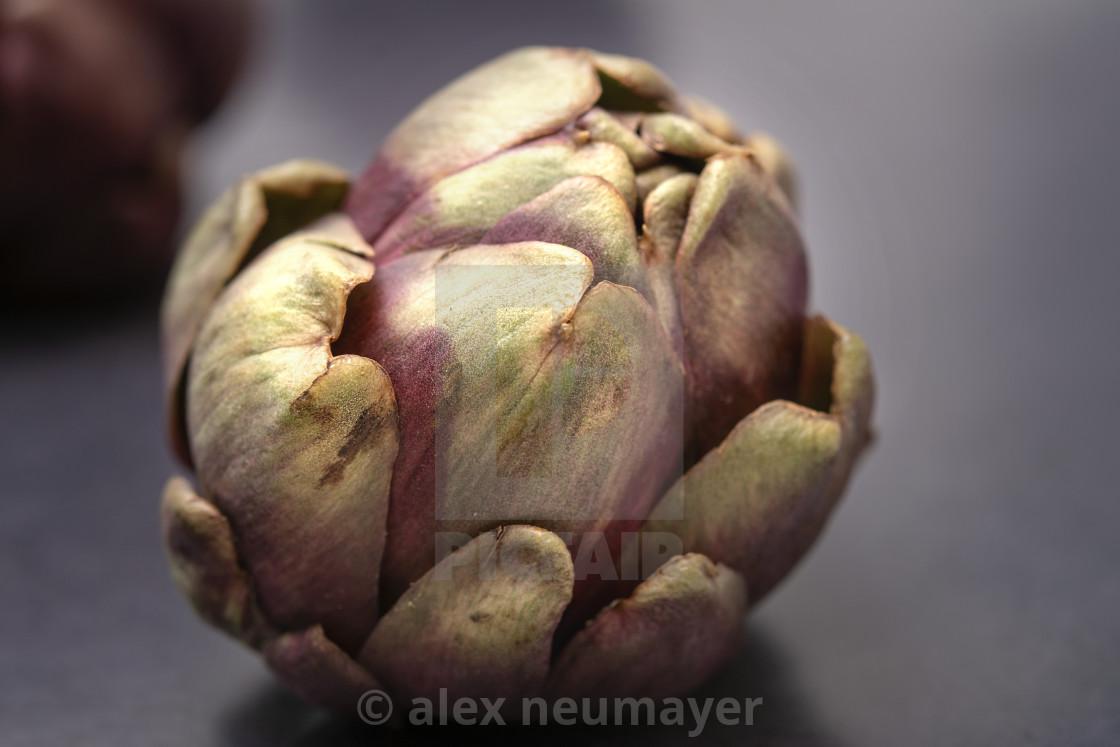 artichokes still life