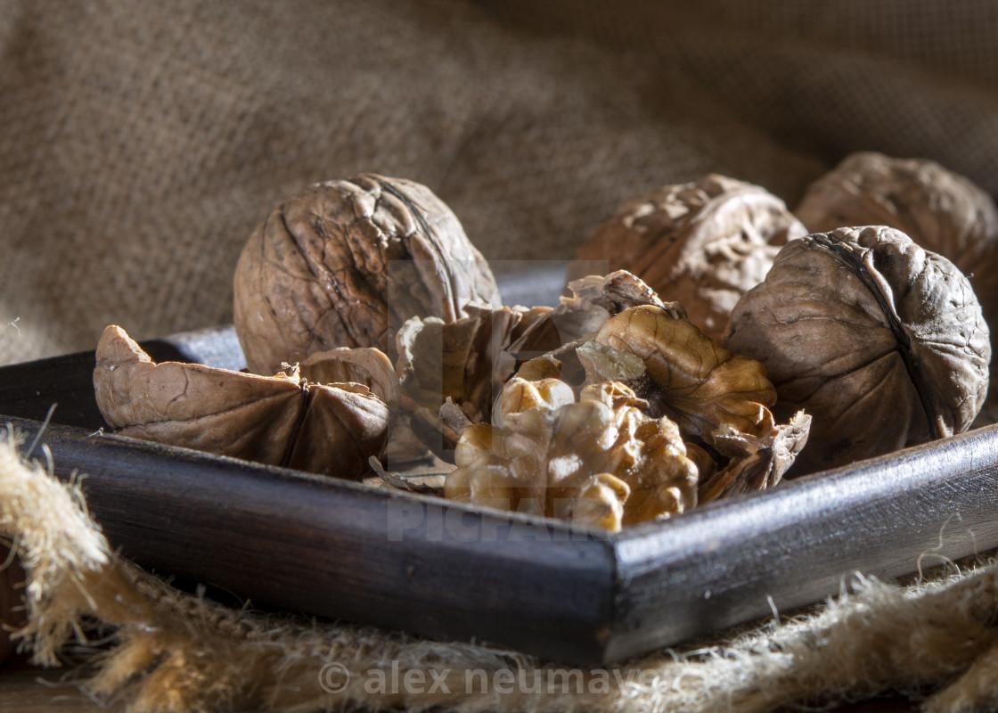 walnuts moody and woody still lifes
