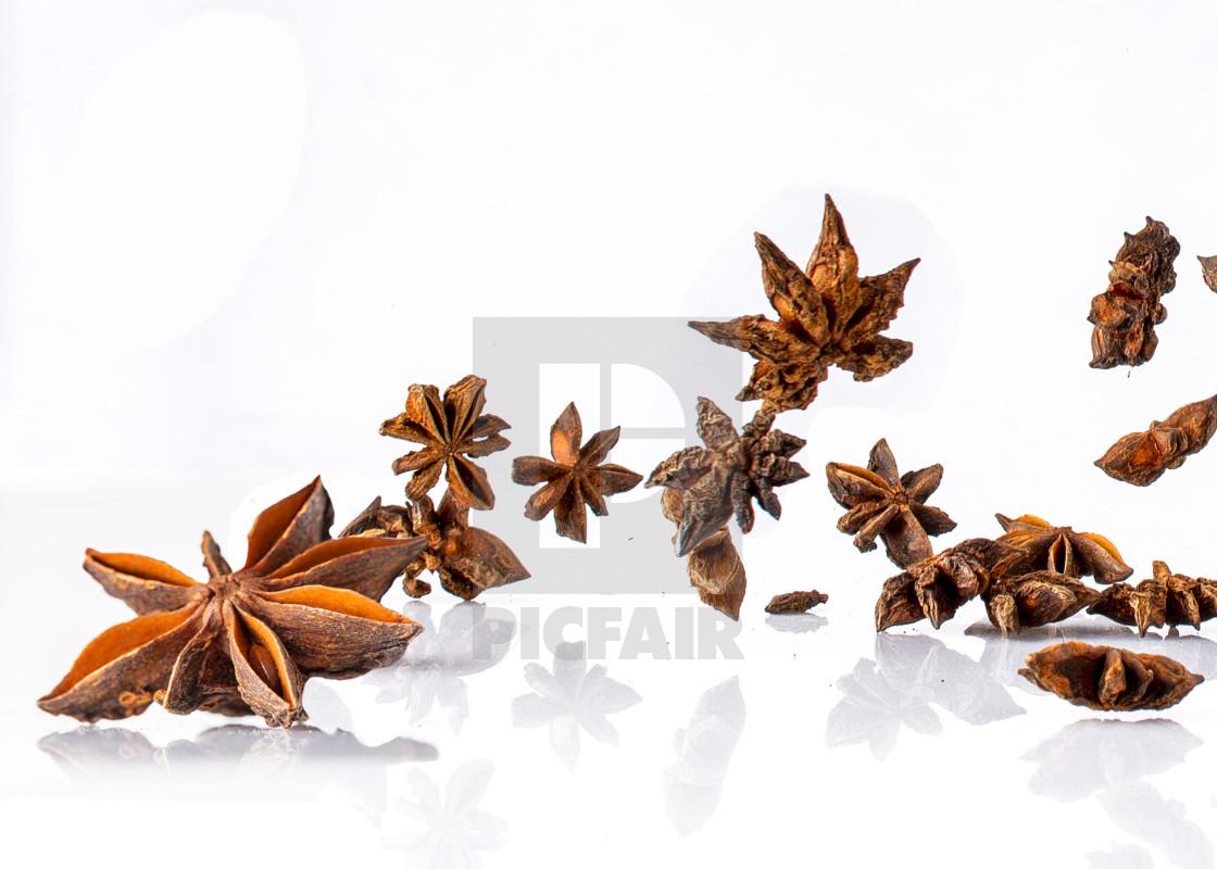 star anise flying -left