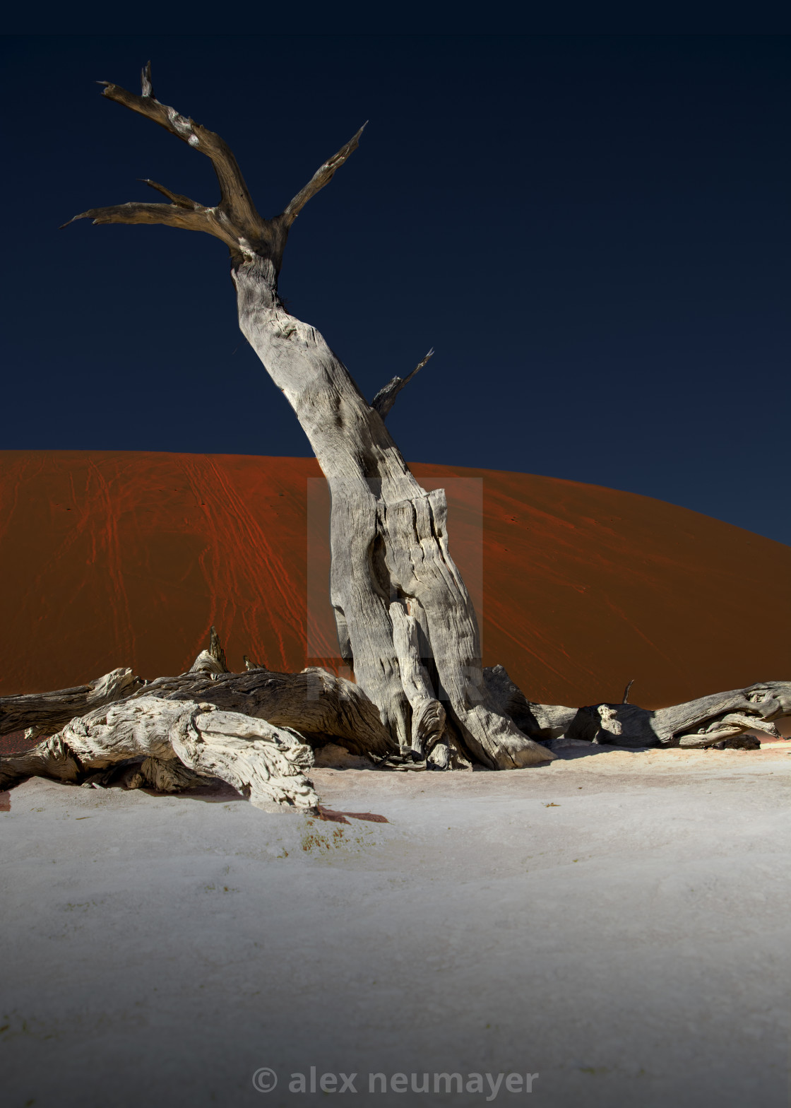 dead vlei in the namib desert