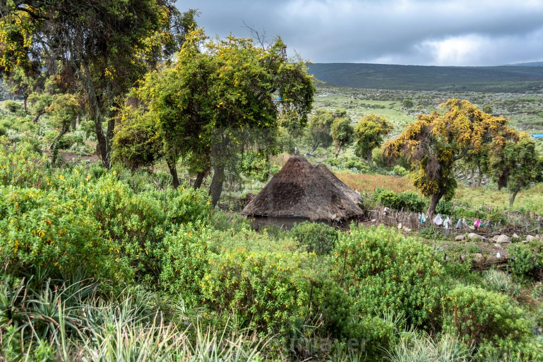Bale mountains nationalpark ethiopia