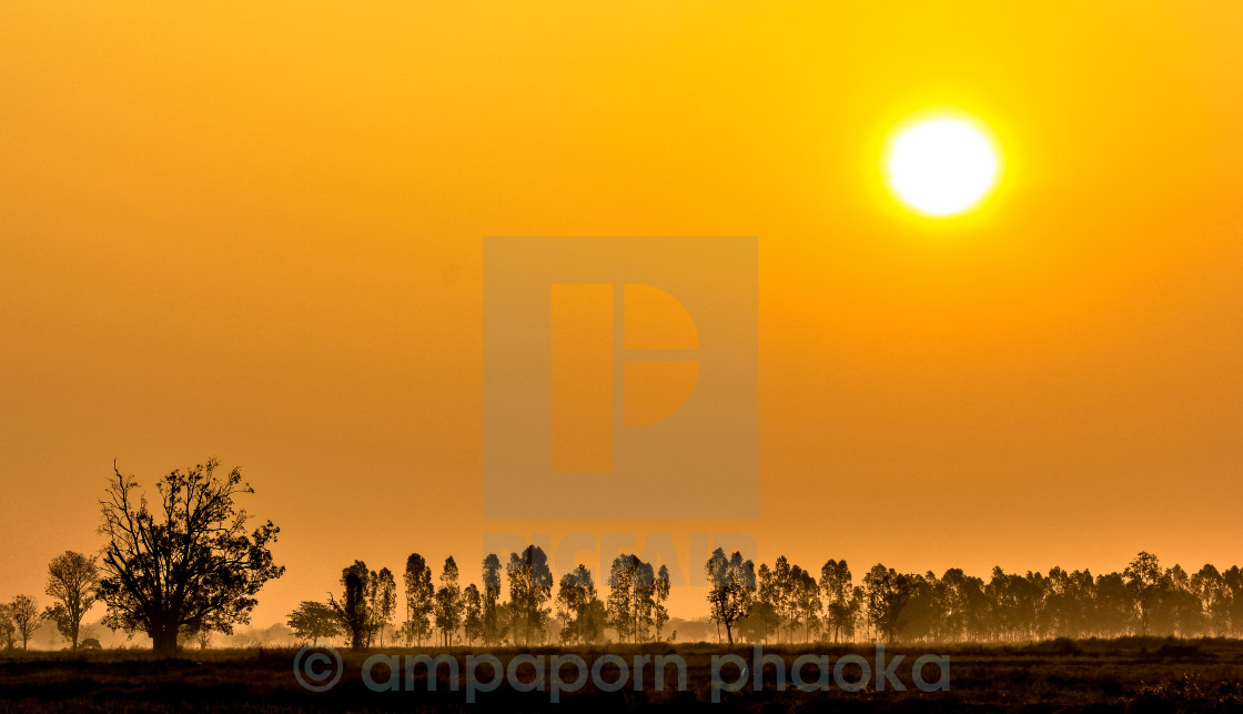 """sun country"" stock image"