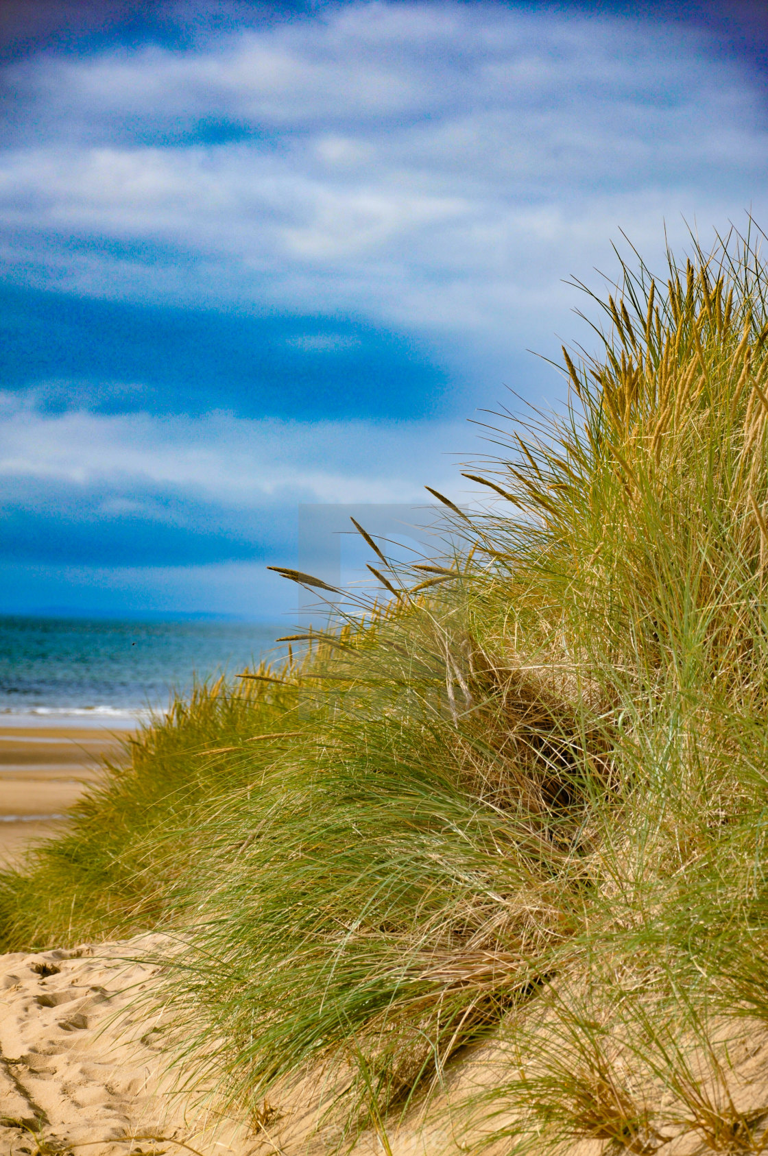 """Wales beach"" stock image"