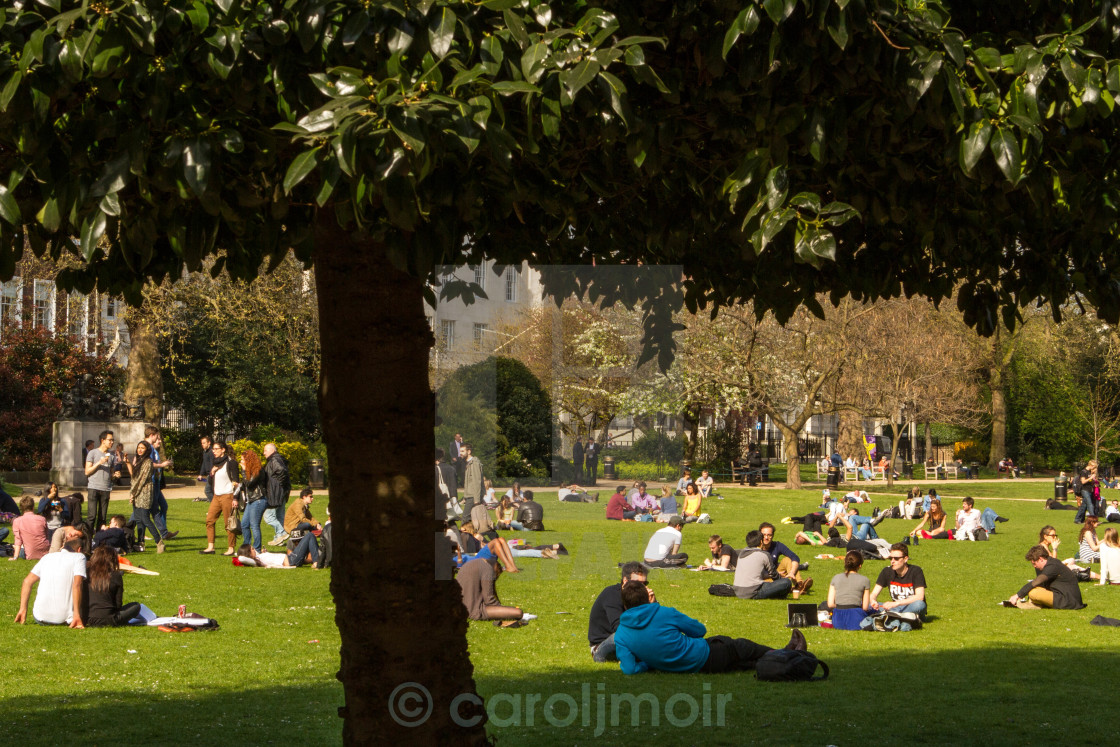 """""""lazing around at lincolns inn fields"""" stock image"""