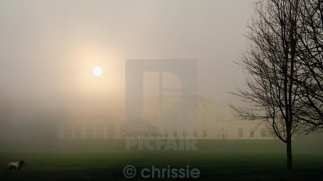 """""""misty Autumn hampstead heath London"""" stock image"""
