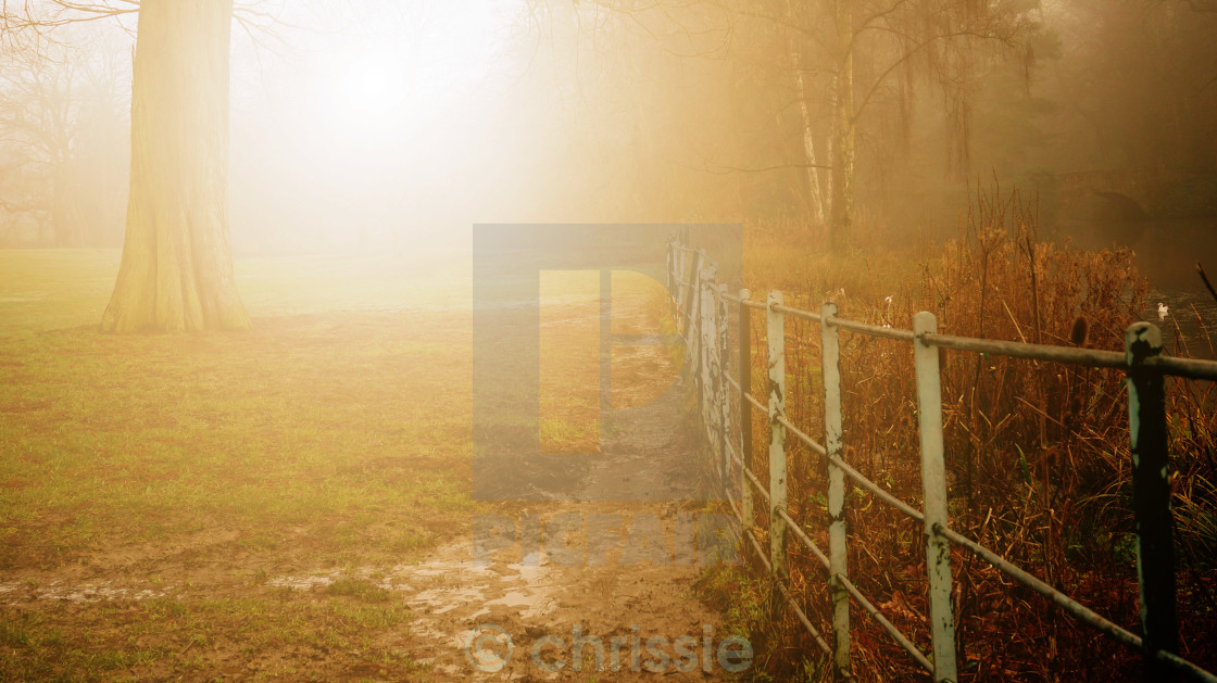 """beautiful golden Autumn"" stock image"