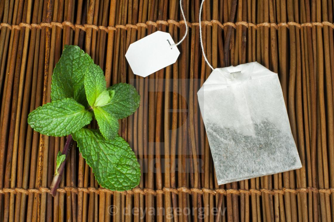 """""""Tea bag and fresh mint"""" stock image"""