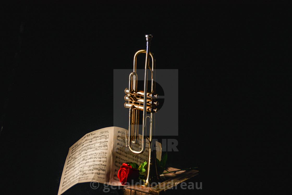 """Trumpet & Rose"" stock image"