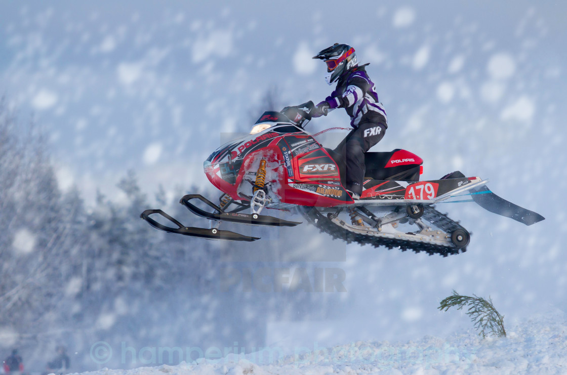 """Arctic cat cup"" stock image"