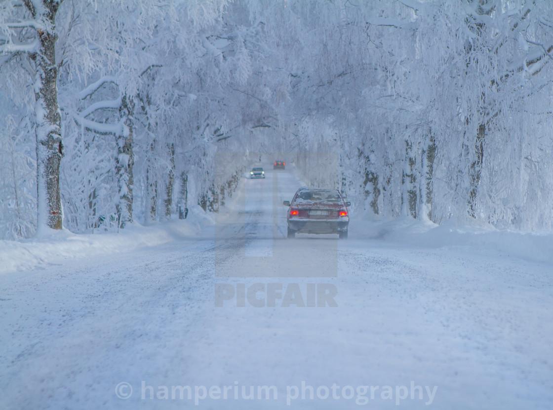 """""""Winter in Sweden"""" stock image"""