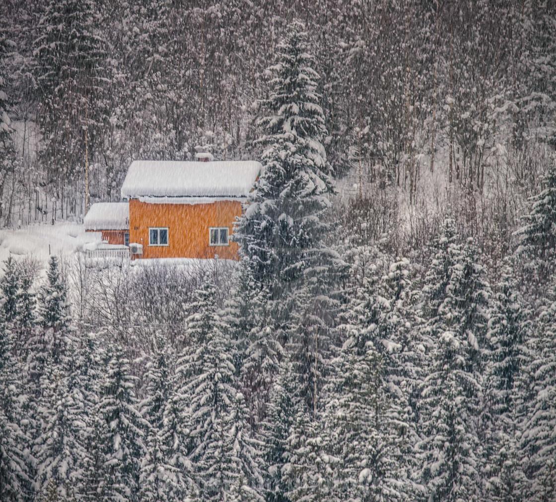 """Snowy landscape"" stock image"