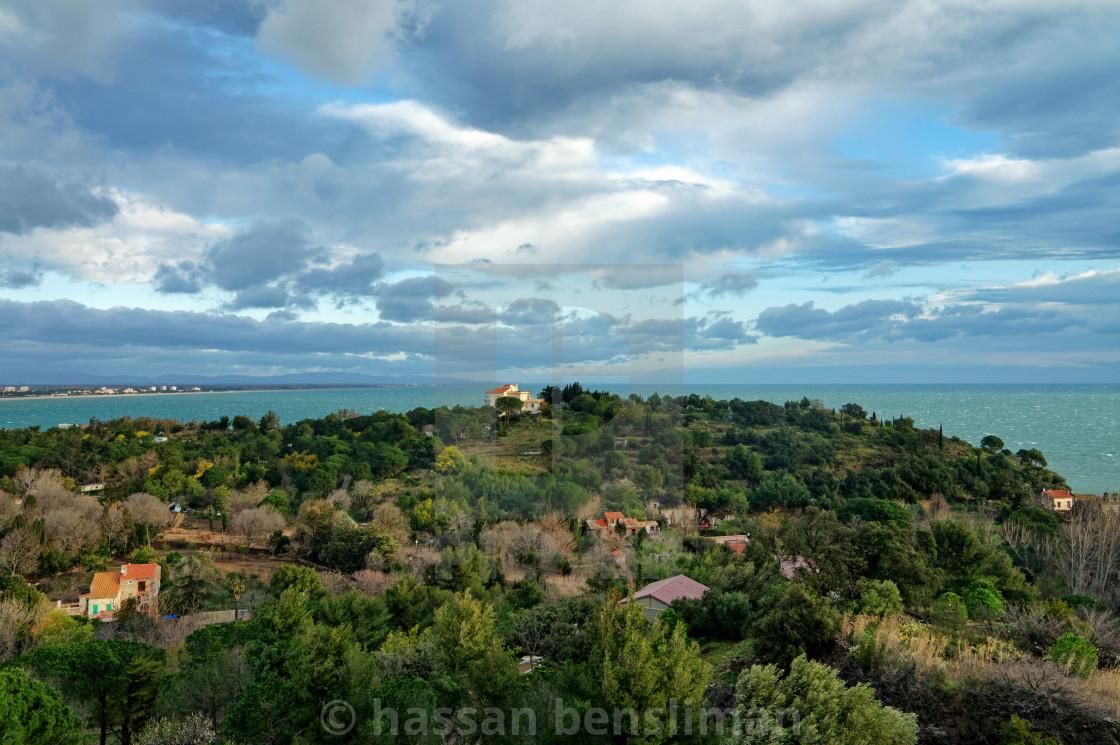 Collioure coast