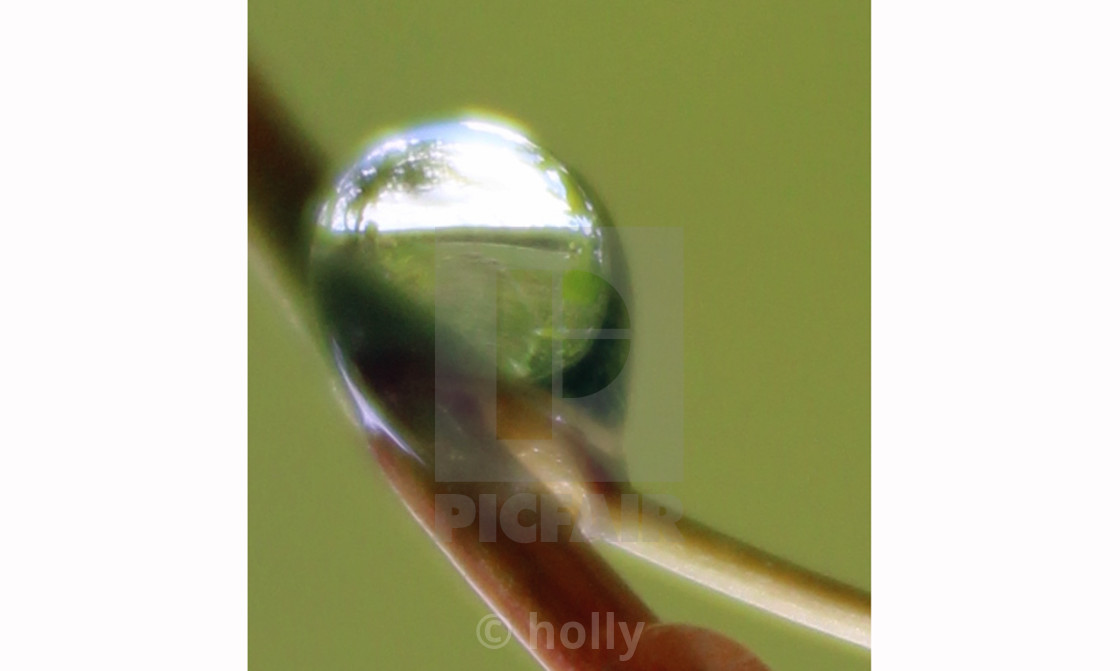 """""""right side up"""" stock image"""