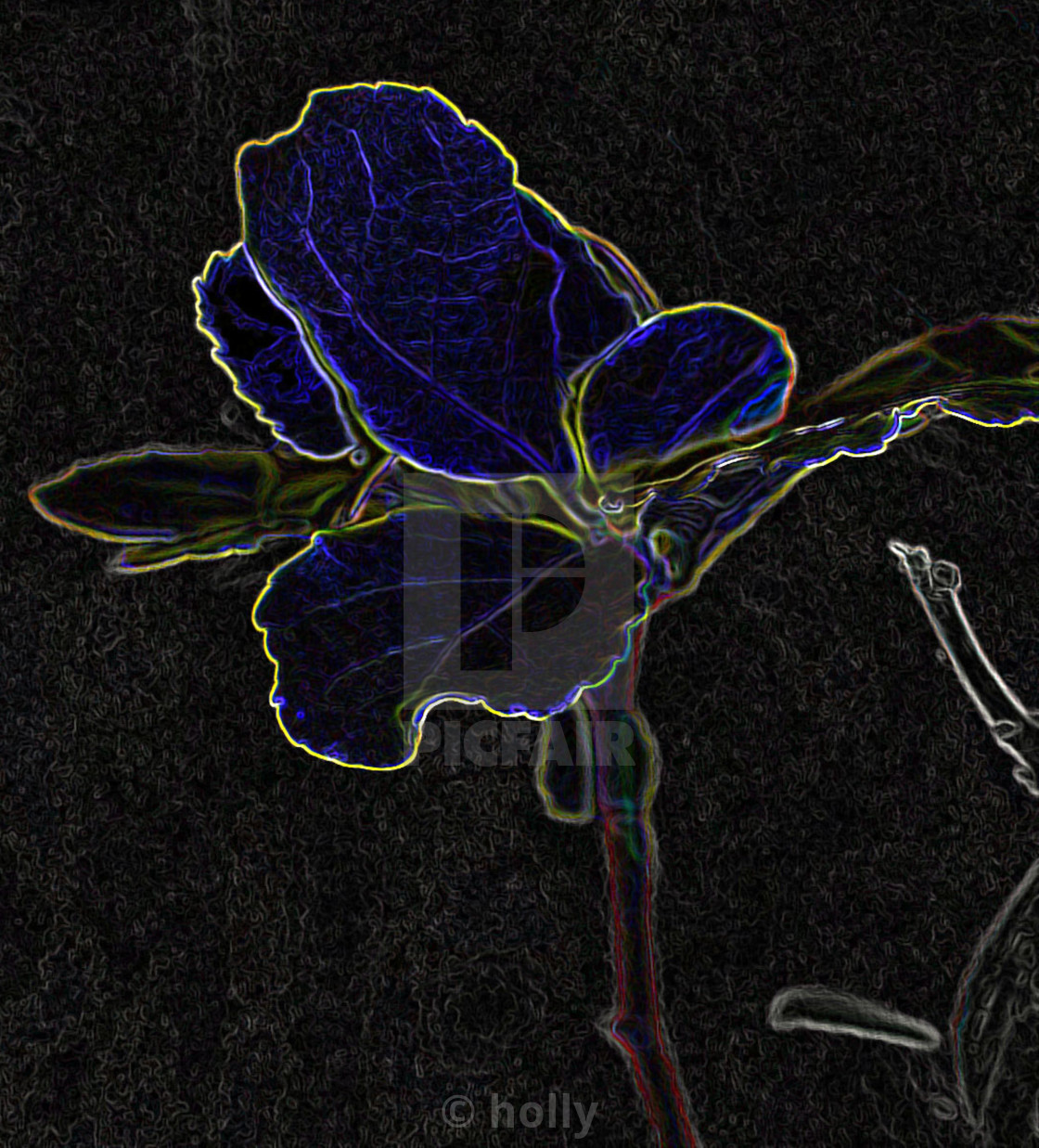 """""""blue flower abstract"""" stock image"""