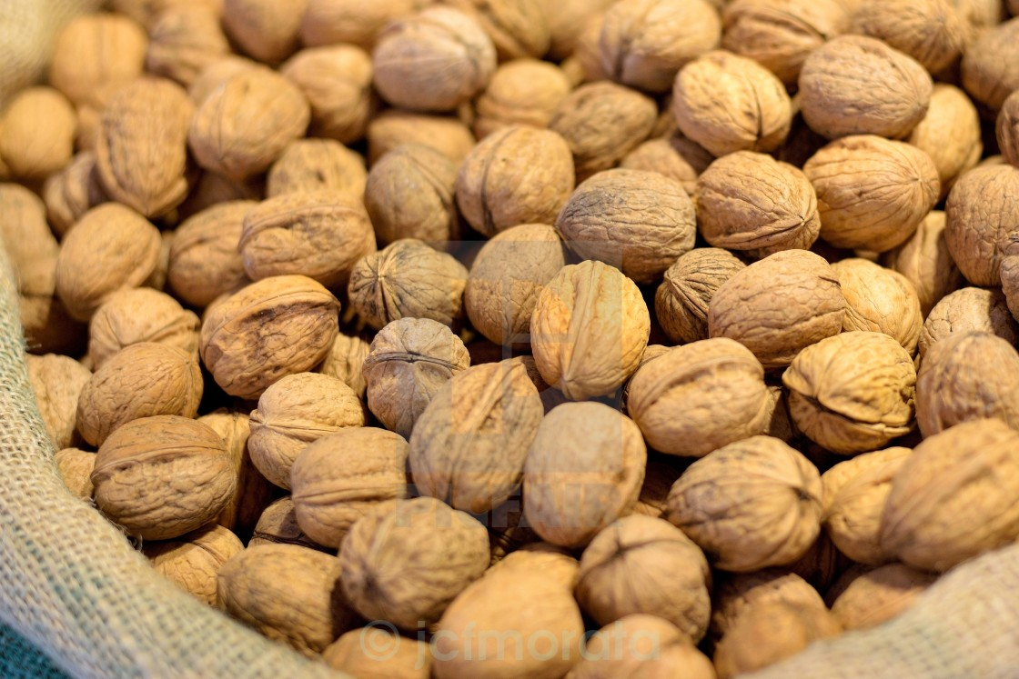 """""""Sack of nuts"""" stock image"""
