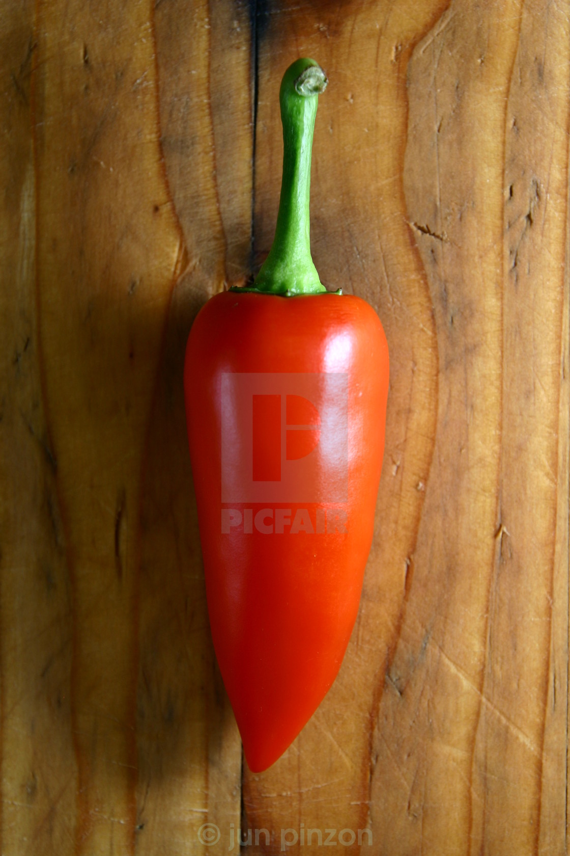 """red bell pepper"" stock image"