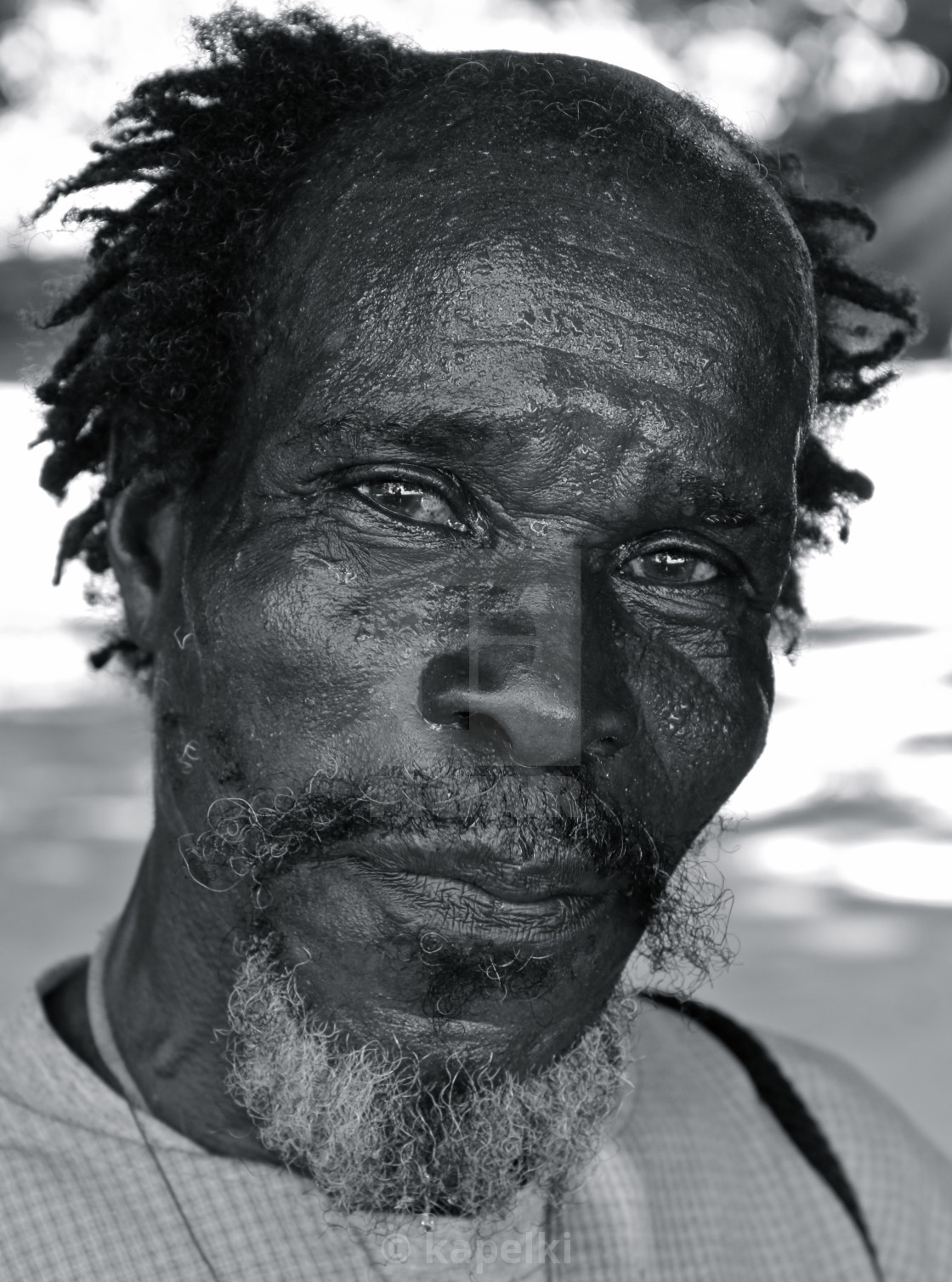 """Portrait of a Grenadian"" stock image"