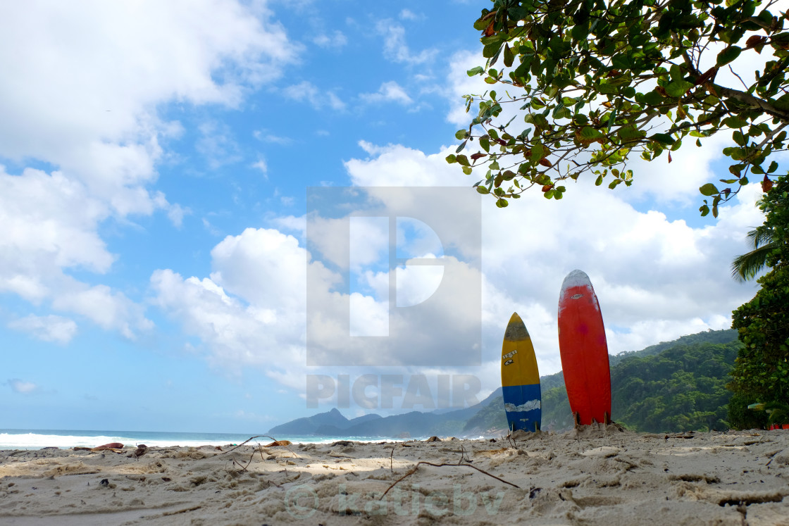 """""""Surfs up"""" stock image"""