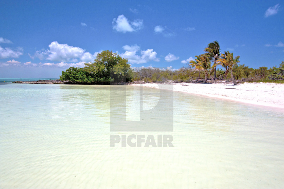 """isla contoy mexico and blue foam"" stock image"