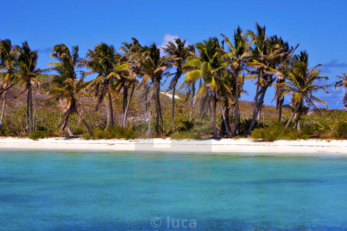 """""""coastline rock in the blue lagoon relax of isla contoy mexico"""" stock image"""