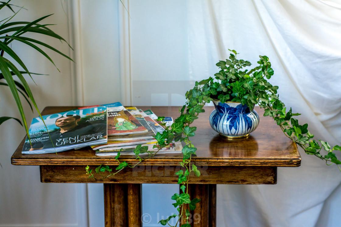 """interior design detail: plant in porcelain bow"" stock image"