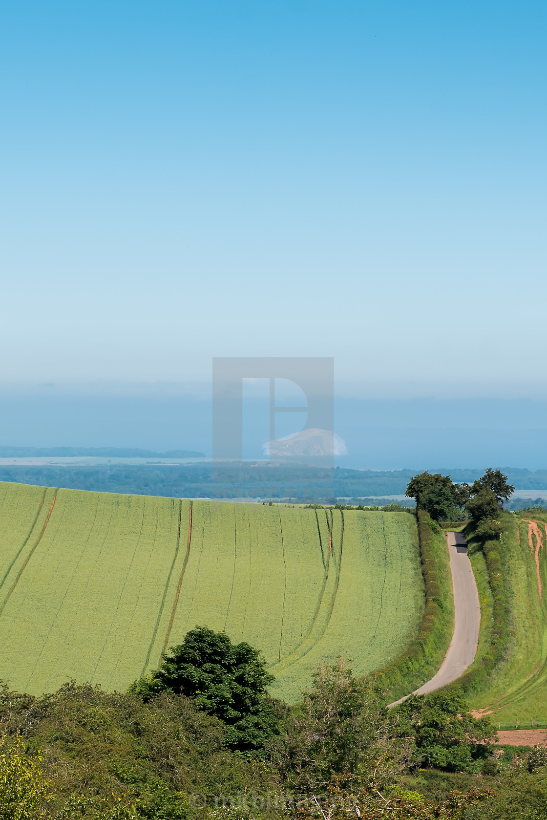 """""""Bass Rock in the haze"""" stock image"""