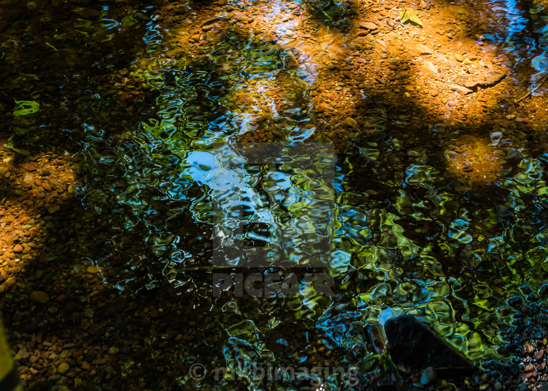 """Reflections in a stream"" stock image"