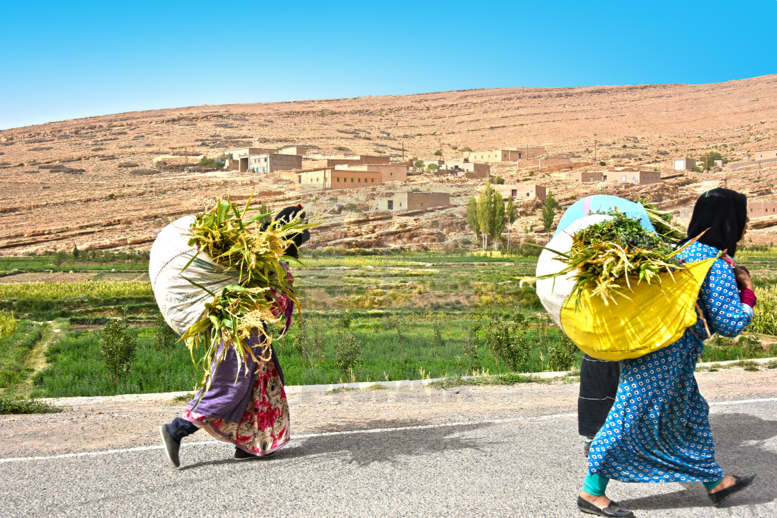 """Village women carrying crops in High Atlas Mountains"" stock image"