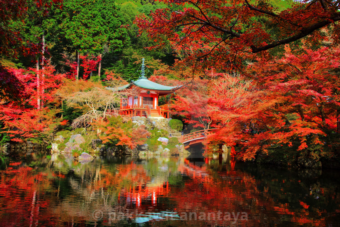 """Daigoji with autumn colors, Kyoto"" stock image"