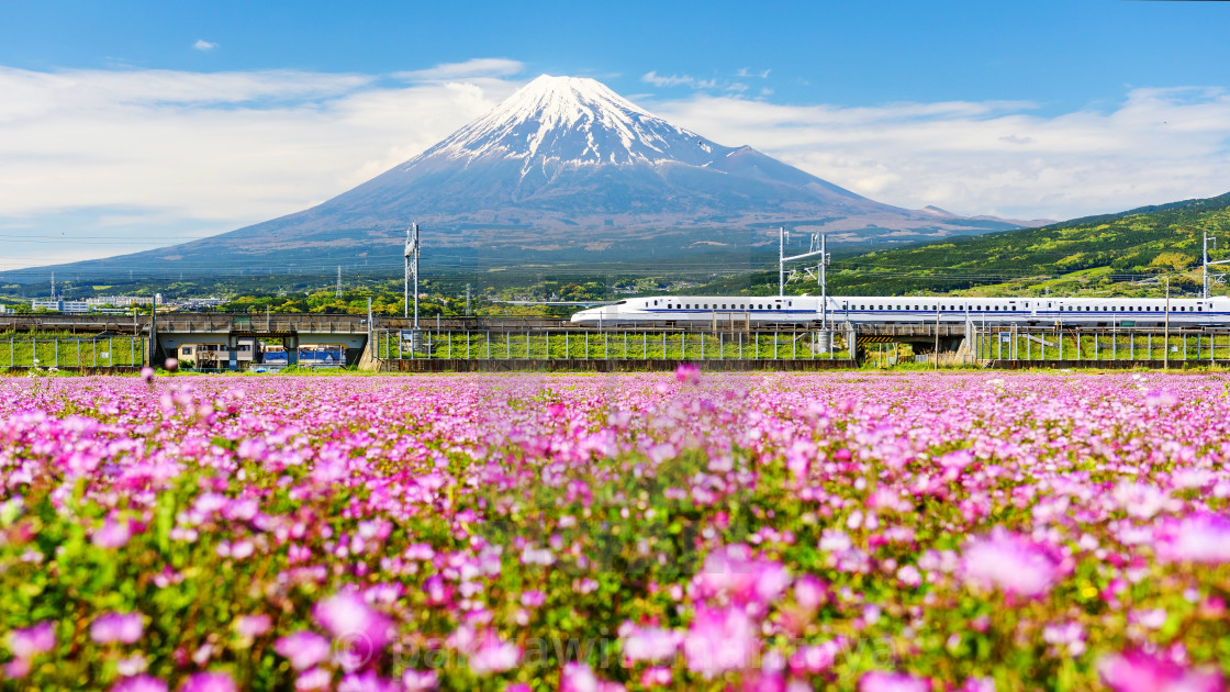 """Shinkanzen run pass Mt. Fuji"" stock image"