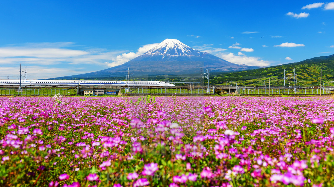 """Shinkanzen with Mt. Fuji view"" stock image"