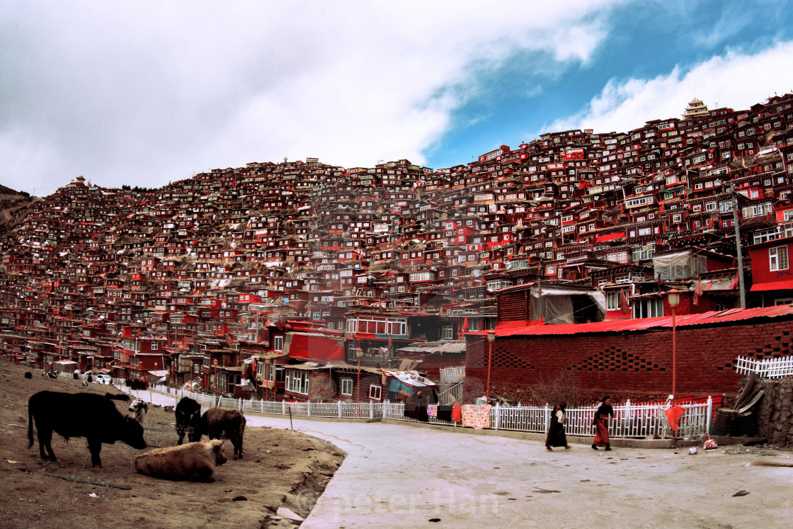 """Tibetan red house"" stock image"